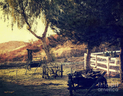 Photograph - Down On The Farm by Rhonda Strickland