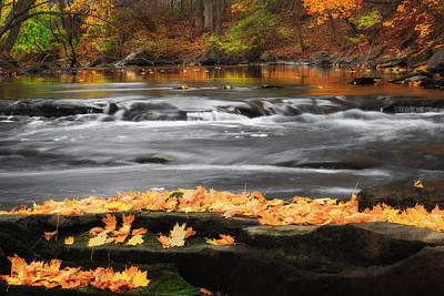 Autumn Scene Photograph - Down On The River by Bill Wakeley