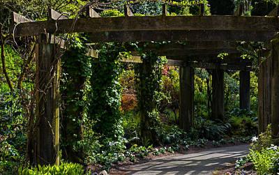 Photograph - Down The Garden Path II by Jordan Blackstone