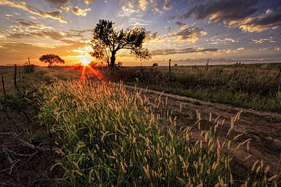 Photograph - Down The Line by Scott Bean