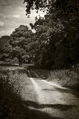 Photograph - Down The Old Farm Track by Stewart Scott