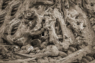 Rock Photograph - Down The Rabbit Hole by LeeAnn McLaneGoetz McLaneGoetzStudioLLCcom
