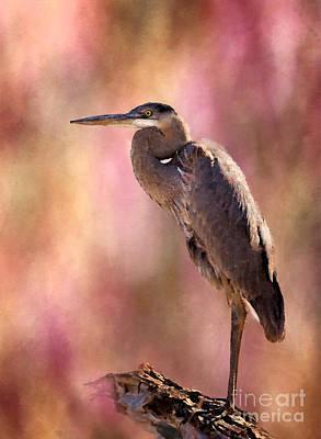 Heron Digital Art - Down Time by Betty LaRue