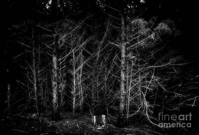 Photograph - Down Two by Fred Lassmann