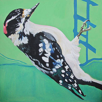 Downey Woodpecker Art Print