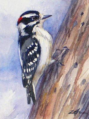 Painting - Downey Woodpecker by Janet  Zeh