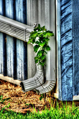 Downspout Art Print by Doc Braham