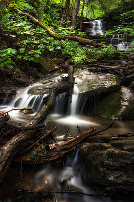 Downstream Art Print by Mark Papke