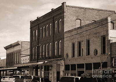 Photograph - Downtown Eagle Lake In Sepia by Connie Fox