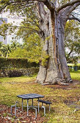 Eyzen Medina Photograph - Downtown Old Tree by Eyzen M Kim