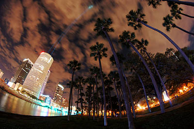 Photograph - Downtown Tampa And Plant Park Palms by Daniel Woodrum