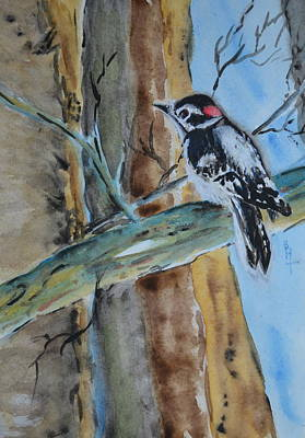 Hairy Woodpecker Painting - Downy  by Beverley Harper Tinsley
