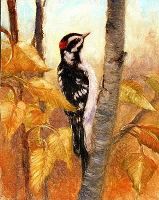 Downy Woodpecker Original by Robert Stump