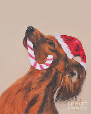 Doxie Drawing - Doxie Holidays by Cori Solomon