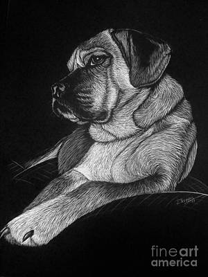Scratchboard Painting - Dozer by Jennifer Jeffris