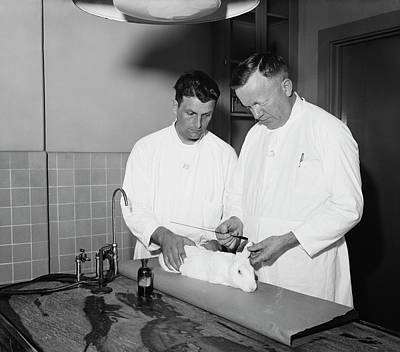 Polio Vaccine Photograph - Dr. Charles Armstrong At Work by Library Of Congress