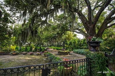 Photograph - Dr George's Garden by Walt  Baker