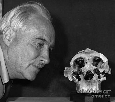 Dr. Louis Leaky With Zinjanthropus Skull Art Print by Jen & Des Bartlett