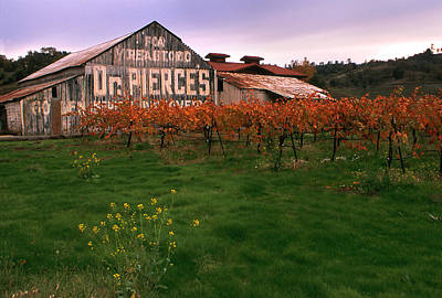 Winery Signs Photograph - Dr Pierce's Barn Billboard by Jerry McElroy