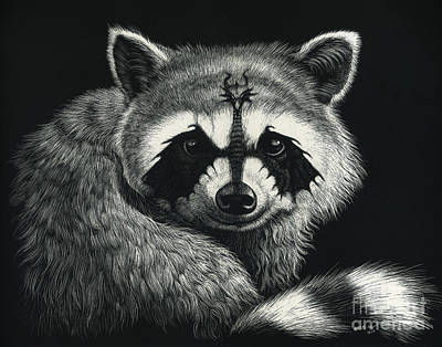 Draccoon Art Print