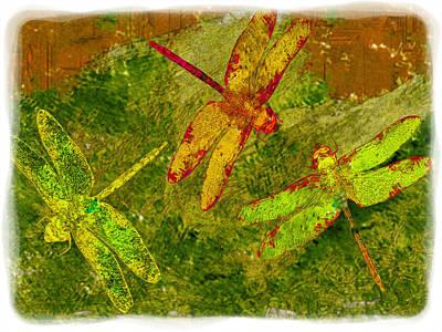 Dragonflies Abound Art Print