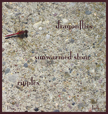 Photograph - Dragonflies Haiga by Judi and Don Hall
