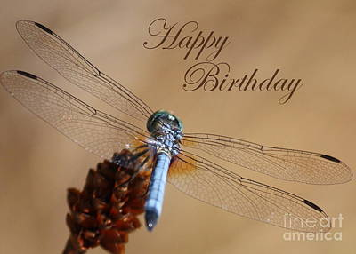Dragonfly Birthday Card Art Print by Carol Groenen