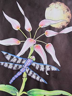 Dragonflys Drawing - Dragonfly Flying By The Moon by Donna Wilson