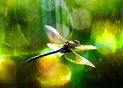 Mixed Media - Dragonfly In Sunlight - Yellow Sunlight by Marie Jamieson
