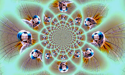 Photograph - Dragonfly Kaleidoscope by Sheri McLeroy