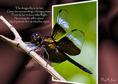 Photograph - Dragonfly Night Flight by Barry Jones
