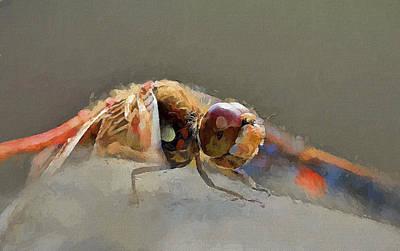 Digital Art - Dragonfly On Start by Yury Malkov