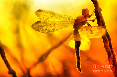 Odonata Painting - Dragonfly On The Sunset by Odon Czintos