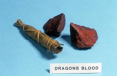 Apothecaries Photograph - Dragon's Blood Sample by Science Photo Library