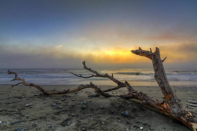 Driftwood Beach Fog Wall Art - Photograph - Dragon's Fire by Debra and Dave Vanderlaan