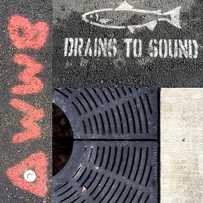 Photograph - Drains To Sound by Nancy Merkle