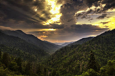Forest Photograph - Drama At Day's End by Andrew Soundarajan