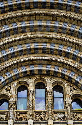 Natural History Museum London Photograph - Drama by Heather Applegate