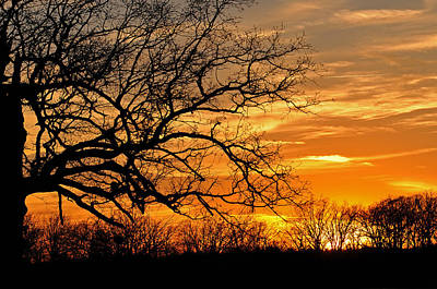 Photograph - Dramatic Sunset  by Jeanne May