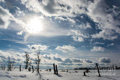 Photograph - Dramatic Winter Day by Cheryl Baxter