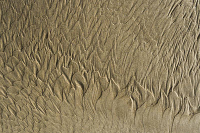 Photograph - Drawings In The Sand - 7 by Michael Goyberg