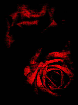 Photograph - Dread Roses by Susan Maxwell Schmidt