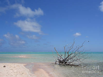 Photograph - Dream Atoll  by Jola Martysz