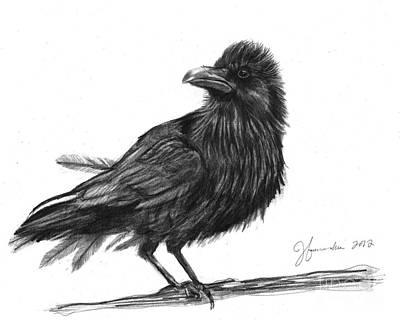 Blackbird Drawing - Dream Crow by J Ferwerda