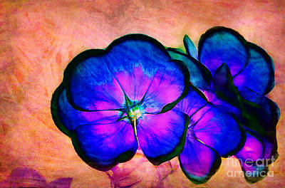 Photograph - Dream-flowers by Judi Bagwell