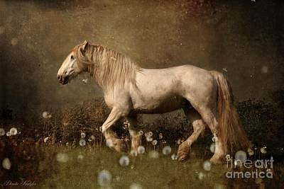 Draft Horses Photograph - Dream Guardian by Dorota Kudyba