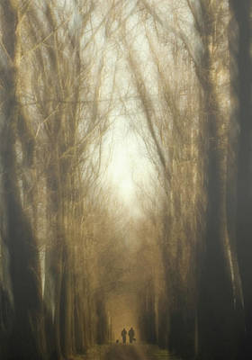 Icm Photograph - Dream Lane by Yvette Depaepe