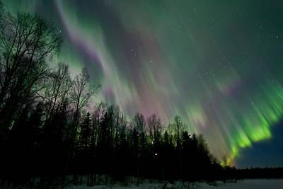 Aurora Photograph - Dream Night by Dora Miller