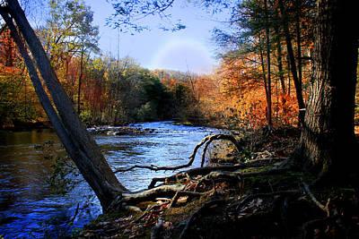 Mallard Photograph - Dream River by Mark Ashkenazi