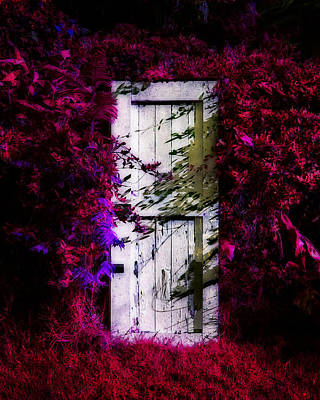 Photograph - Dreamers Door by Timothy Bulone